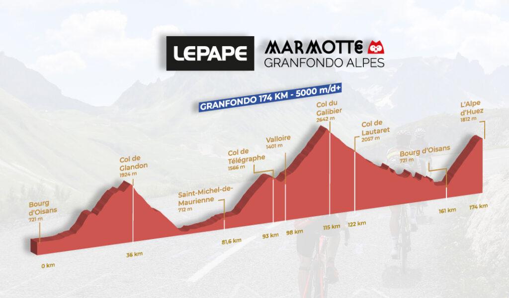 Marmotte Alpes